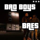 Bad Boys van Bas