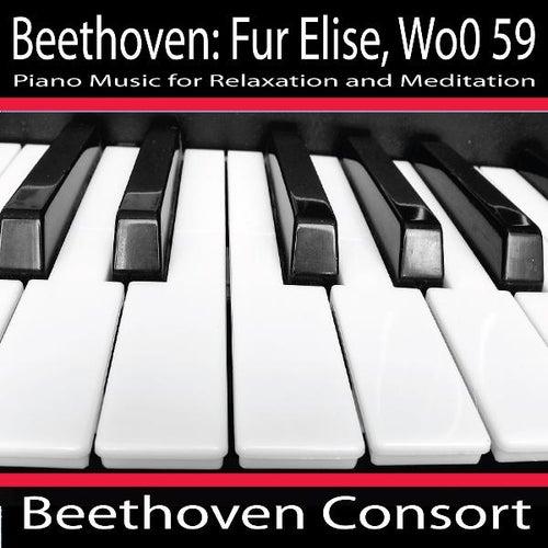 Beethoven: Fur Elise, Woo 59 by Beethoven Consort