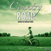 Country Road, Vol. 1 (History of Country Music) by Various Artists