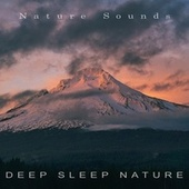 Deep Sleep Nature by Nature Sounds (1)