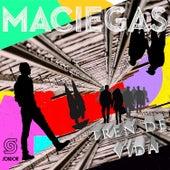 Tren de Vida de Maciegas