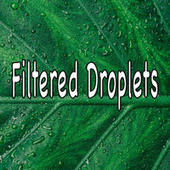 Filtered Droplets by Rain Sounds (2)