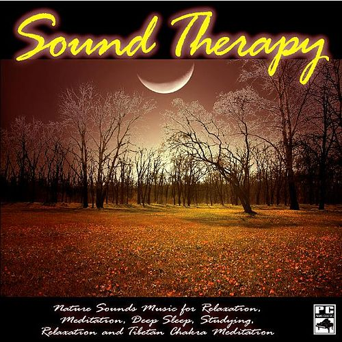 Nature Sounds Music for Relaxation, Meditation, Deep Sleep, Studying, Relaxation and Tibetan Chakra Meditation by Sound Therapy, Spa, Yoga, Healing Massage, Baby Sleep and Chakra Balancing