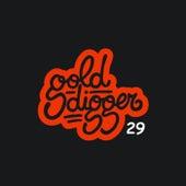 Gold Digger, Vol. 29 de Various Artists