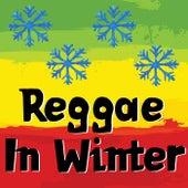 Reggae In Winter von Various Artists