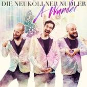 A Wunder de Die Neuköllner Nudler