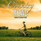 Country Road, Vol. 4 (History of Country Music) by Various Artists