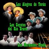 Los Alegres De Teran, Los Coyotes del Río Bravo, Los Hermanos Prado by Los Alegres de Teran