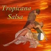 Tropicana Salsa Vol. 1 de Various Artists