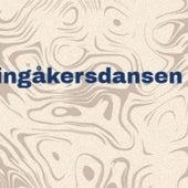 Vingåkersdansen de Various Artists