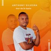 Amor Não Se Apanha von Anthony Silveira