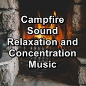 Campfire Sound Relaxation and Concentration Music by Spa Music (1)