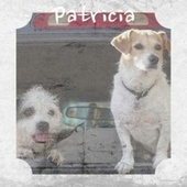Patricia de Various Artists