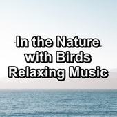 In the Nature with Birds Relaxing Music by Spa Music (1)