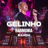 Gelinho (Ao Vivo) (Ao Vivo) de Harmonia Do Samba