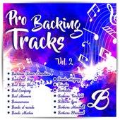Pro Backing Tracks B, Vol.2 by Pop Music Workshop