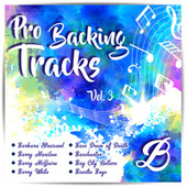 Pro Backing Tracks B, Vol.3 by Pop Music Workshop
