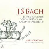 J.S. Bach: Organ Works de James Johnstone