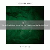Today The Nature Hums Just For Your Power Nap And Chillout by Trouble Sleeping Music Universe