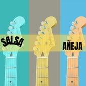 Salsa Añeja by Anthony Cruz, Edgar Joel, El Gran Combo de Puerto Rico, Frankie Ruiz, Grupo Niche