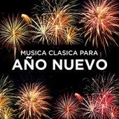 Musica Clasica para Año Nuevo de Various Artists