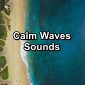 Calm Waves Sounds von Delta Waves