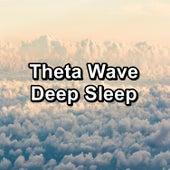 Theta Wave Deep Sleep by Sounds for Life