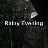 Rainy Evening by Thunderstorm Sound Bank
