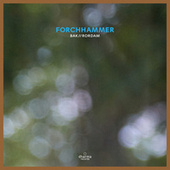 Forchhammer by Bak