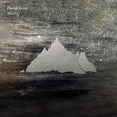 Skellig by David Gray