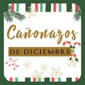 Cañonazos de Diciembre by Various Artists