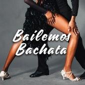 Bailemos Bachata by Various Artists