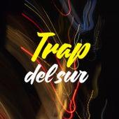 TRAP del sur de Various Artists
