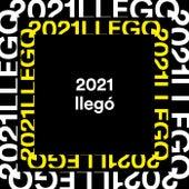 2021 llegó von Various Artists