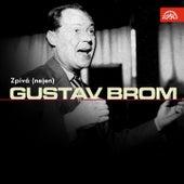 Zpívá (nejen) Gustav Brom de Various Artists