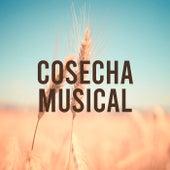 Cosecha Musical de Various Artists