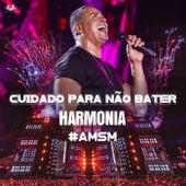 Cuidado Pra Não Bater (Ao Vivo) (Ao Vivo) de Harmonia Do Samba