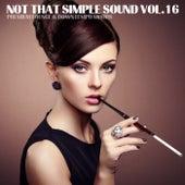 Not That Simple Sound (Premium Lounge and Downtempo Moods, Vol. 16) de Various Artists