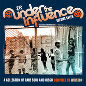 Under the Influence Vol.7 compiled by Winston de winston