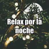 Relax por la noche by Various Artists