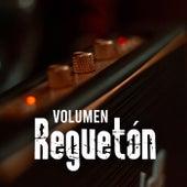 Volumen Reguetón von Various Artists