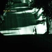 Risen by O.A.R.