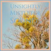 Unsightly Mistletoe Sounds by Johnny Maestro