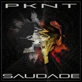 Saudade by Pknt