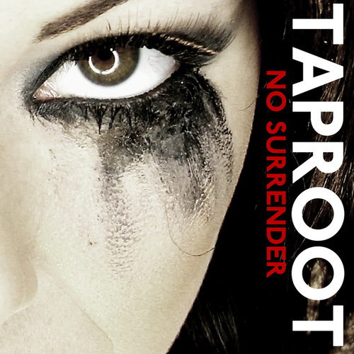 No Surrender by Taproot