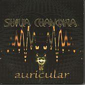 Auricular by Shiva Chandra