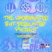 The Underrated but Dedicated Project by L.S.D.