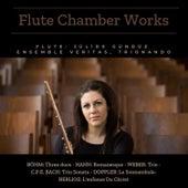 Flute Chamber Works von Jülide Gündüz