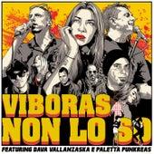 Non lo so by Viboras