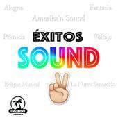Éxitos Sound 2 de Varios Artistas